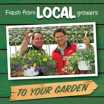 Fresh from Local Growers to Your Garden