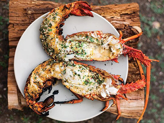 Grilled_Lobster