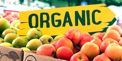 Yellow sign with green letters that read organic in a bin of red and green apples