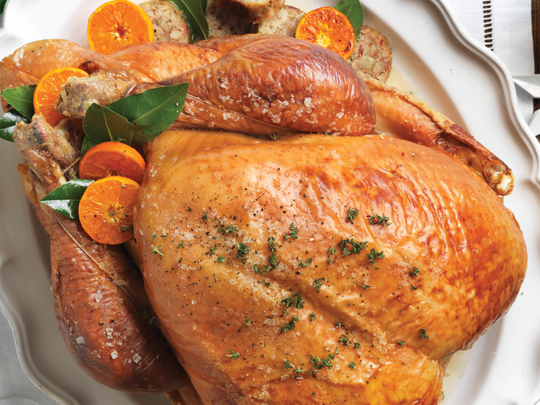 roast_turkey
